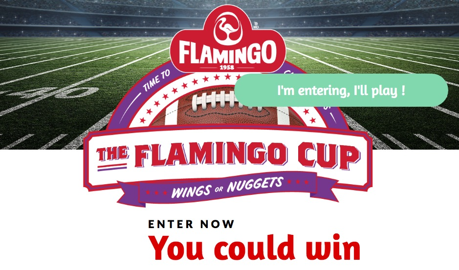 The Flamingo Cup Superbowl Contest: Win a trip to the Grey Cup 2019